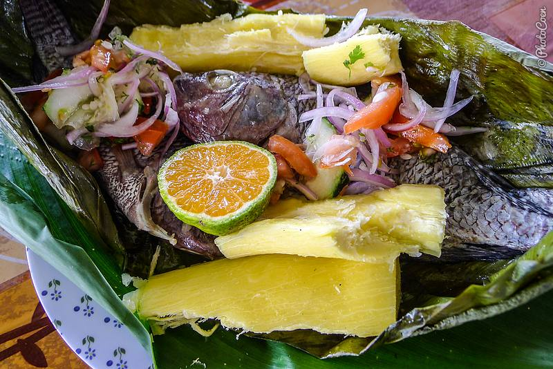 Platos t picos ecuatorianos maito de tilapia for Comida para tilapia