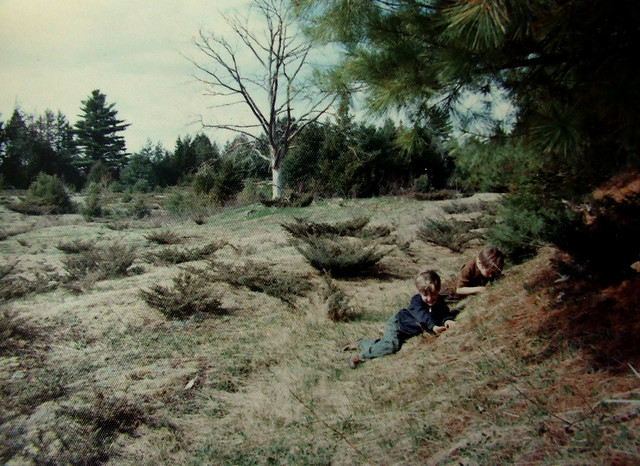 with Steve at the upper edge of the old pasture in Maine