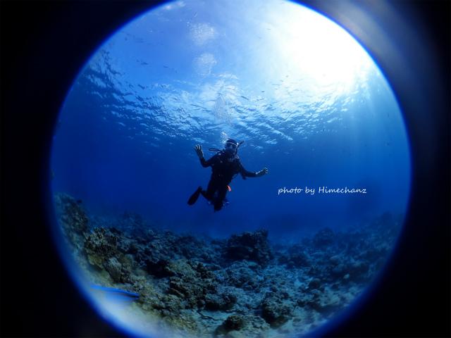 体験ダイビングなのに、これだけ自由に泳げちゃってます♪