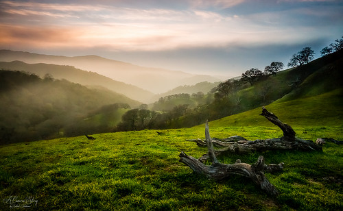 california ca usa hiking bayarea sunol sunolregionalwilderness eastbayparks maguirepeaksloop sony2470mmf28cz sonydslta99