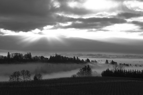 landscape oregonskies willamettevalleynewberg dundeehillsviticulturearea redhillsvineyardlandscape2015dundeeoregonsunrisewillamettevalley