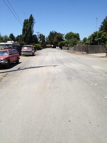 Unpaved Road in Moorland