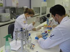 Laboratórios de Biotecnologia - itt Nutrifor