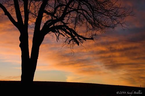 sunrise december washingtoncounty sandybohlken