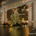 Christmas Tree. Wrigley Building