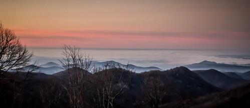 Sassafras Sunrise on New Years Day-10