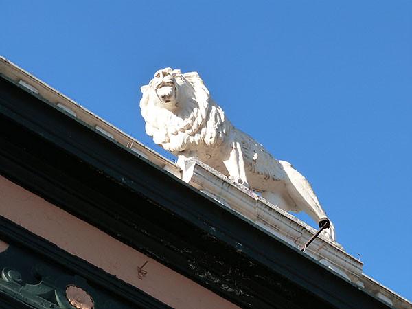 the slug's lion