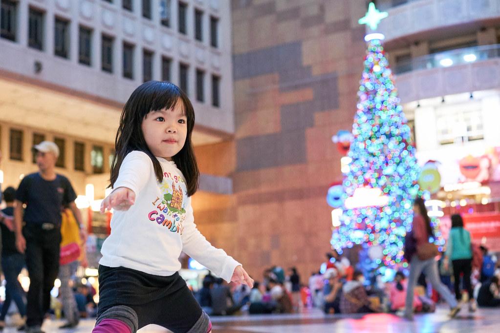 2014聖誕樹開跑