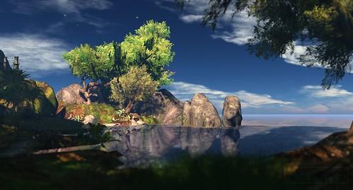Where's Dim Sum? #272 - Tree in Paradise