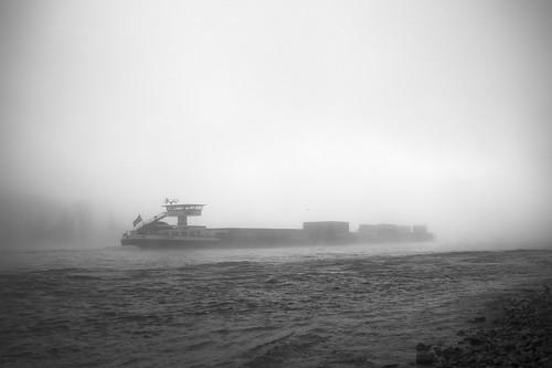 blackandwhite bw misty fog sunrise nebel sony schwarzweiss rhine rhein rheinland rhinevalley nebelig rhinelandpalatinate rhens sonyα900