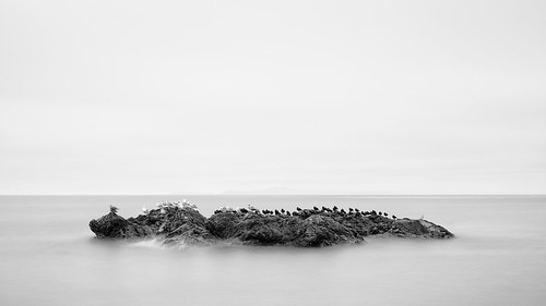 birds blackandwhite nature longexposure deceptionpass water cloudy motion blur pacificnorthwest canoneos5dmarkiii johnwestrock canonef2470mmf28lusm monochrome washington