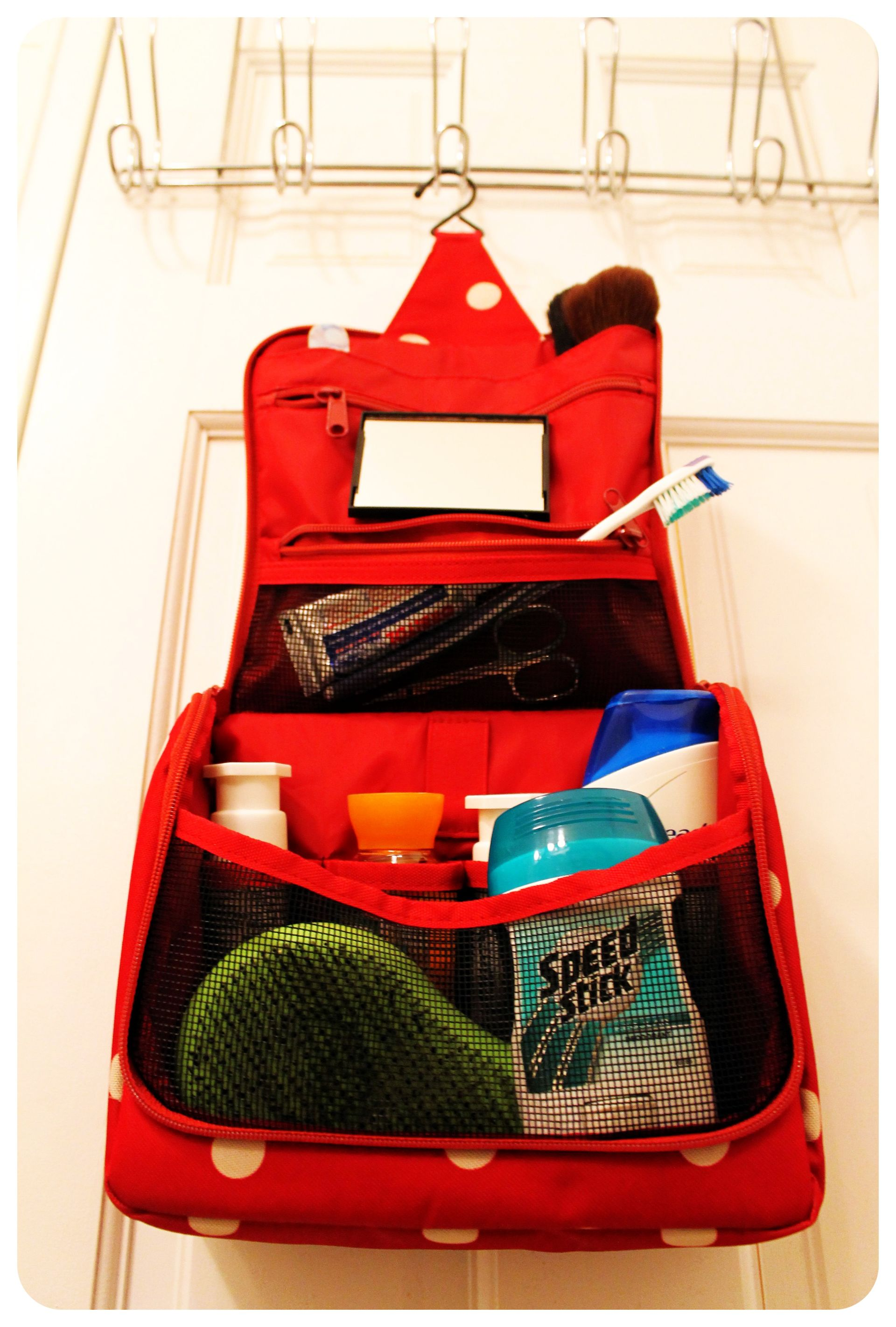 Containerstore Toiletries Organizer