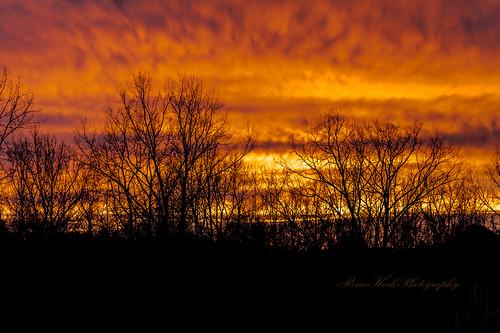 sunset 2014 52weeksfornotdogs