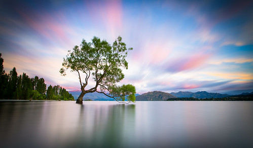 new cloud lake holiday colour tree clouds sunrise canon photography dawn photo long exposure smooth zealand willow nz 5d wanaka 5dm3