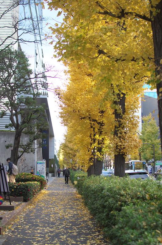 東京路地裏散歩 原宿 代々木 2014年12月13日