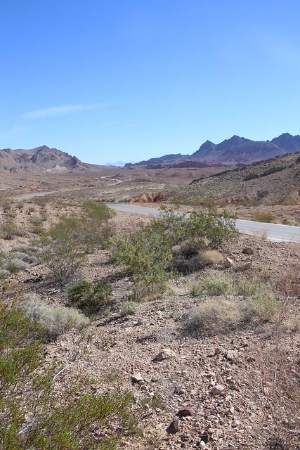 Arizonian desert.