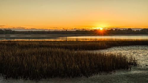 sunrise reeds marsh wrightsvillebeach wilmingtonnc sonyilce7r sel2470z