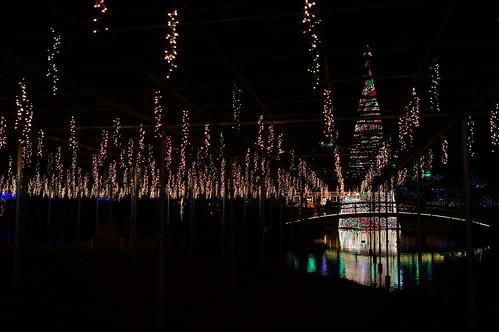 Flower Fantasy 2015 illumination at Ashikaga Flower Park 32