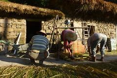 田邊聊寮靠一群在地壯年整合在地智慧投入修復,人禾基金會提供照片。