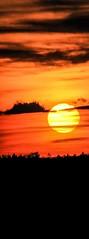 SX60 Sunset  - Sonnenuntergang - Tramonto - Coucher du Soleil - Pôr do Sol  -- Gün Batımı --