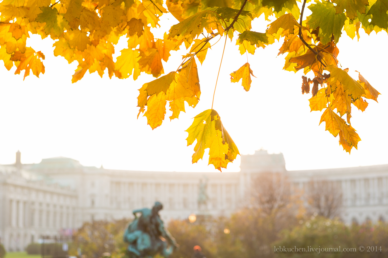 morning in Vienna
