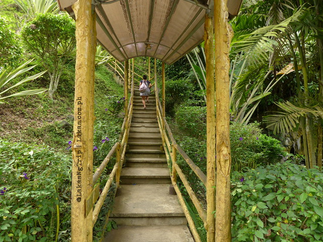 Stairs at NPC Nature's Park. Maria Cristina Falls in Iligan City, Philippines