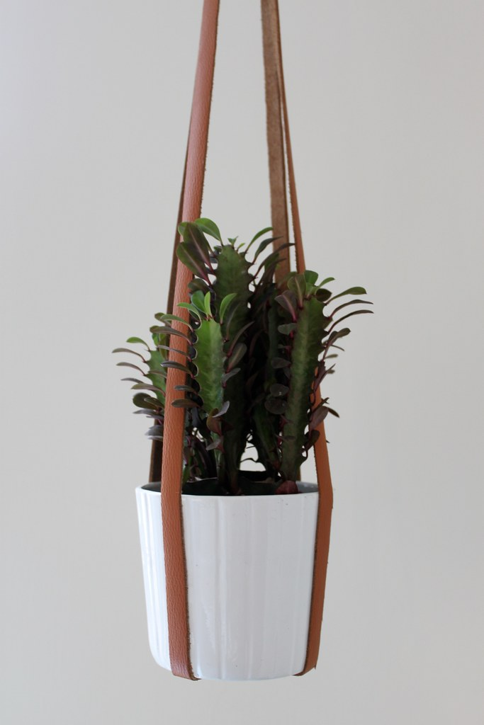 How to make a leather planter www.apairandasparediy.com
