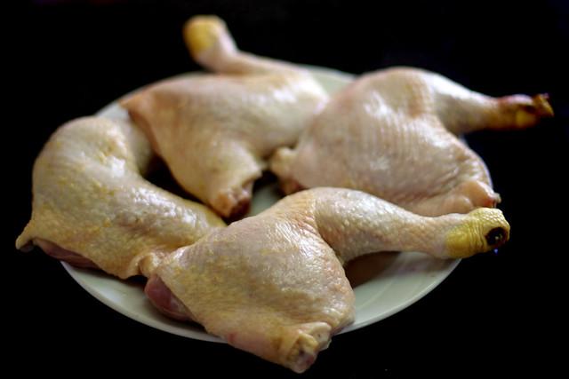Pollo Knorr (4)