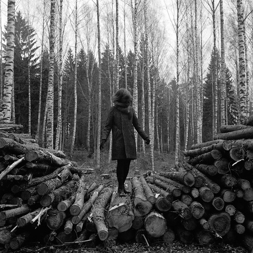 trees people lines rolleiflex logs 1600 epson hp5 pushed ilford planar 28e v850