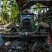 Oldtimer Car Graveyard (05)