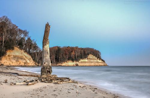 ocean sky tree beach nature water landscape magic maryland chesapeakebay waterscape calvertcliffs
