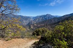 Kings Canyon & Sequoia - 199