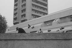 צילומי רחוב+spoting 045