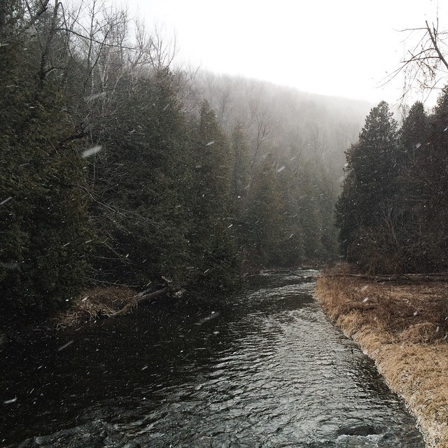 Flurries on the Credit River