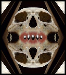 THE UNKNOWN SKULLS BIG GRIN OUT OF THE COFFIN