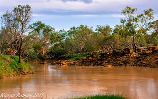Thomson river 8/1/15