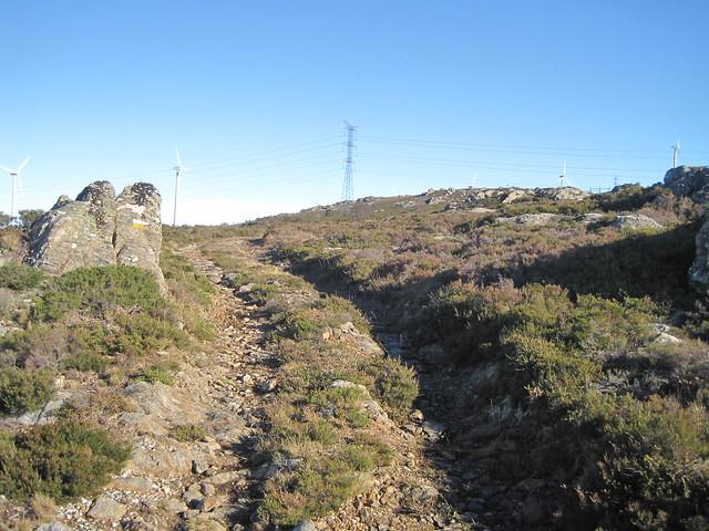 Camino en el PR-G 100 Sendeiro Natural Aciveiro - Candán