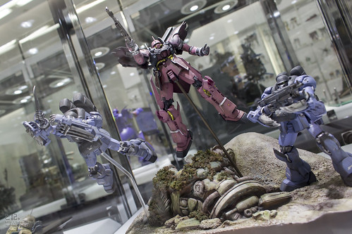 GBWC2014_World_representative_exhibitions-234