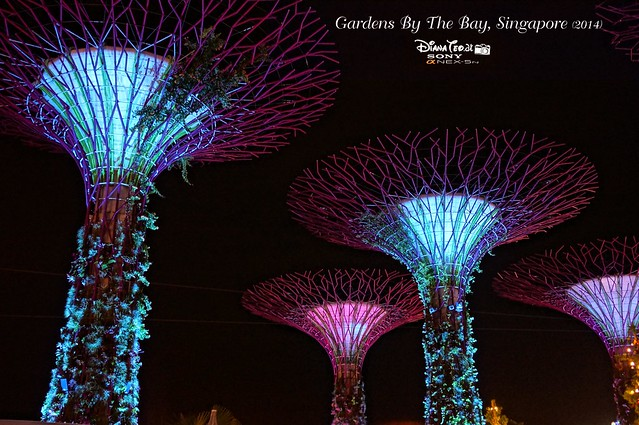 Singapore - Gardens By The Bay 12