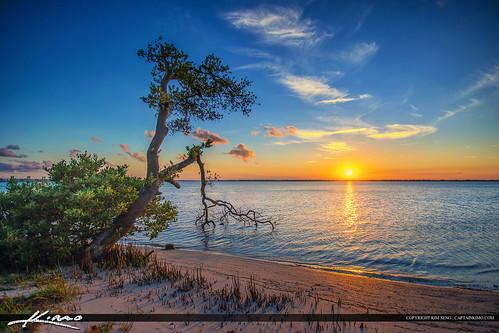 florida stuart mangrove topaz martincounty photomatixpro okeechobeewaterway hdrphotography refugehouse captainkimo