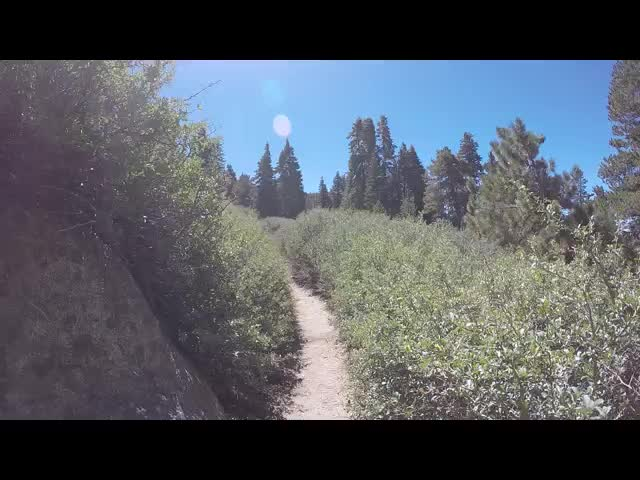 241 GoPro Video of cruising along a Buckthorn-Lined Trail (Deer Springs Trail)