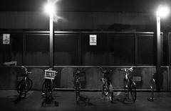 1210 night-riders