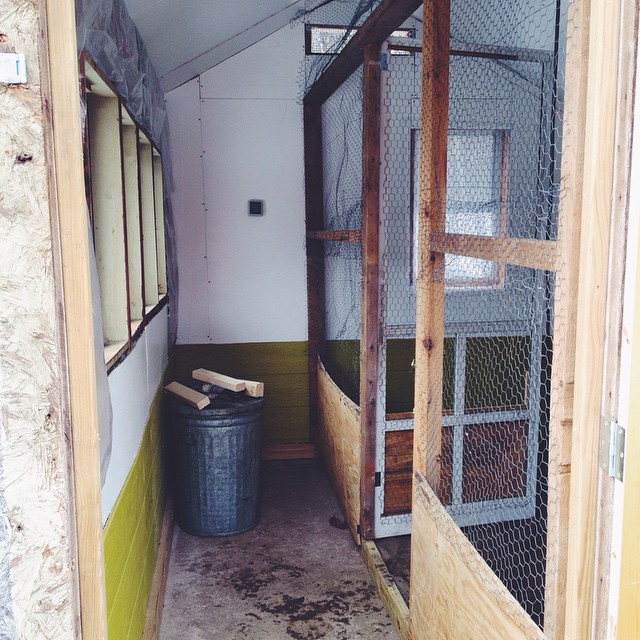 All new insulation, two new vents and storm windows, new interior walls, and a partition that will get spiffed up in the spring. The other windows will be replaced and all windows will be framed. It's so much brighter and warmer in here, now.