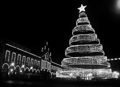 ~*~ Feliz Natal ~*~