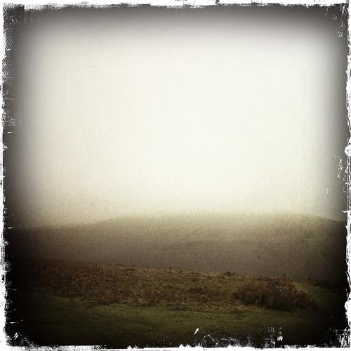 Misty Sugarloaf
