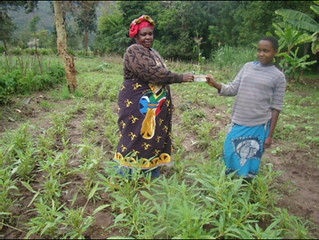 Mrs Lukumay handing over to daughter Nembris the revenue of the day's sales of amaranth (Photo credit: AVRDC / Inviolate Mosha)