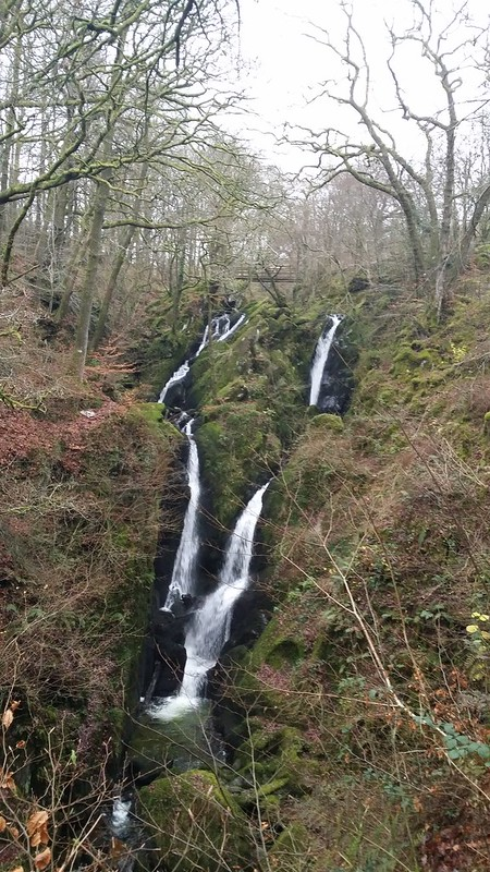 Stock Ghyll Force #sh