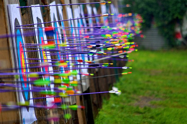 263/365: Arrows in target
