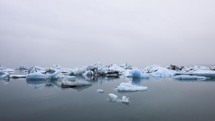 Iceland_Spiegeleule_August2014 136