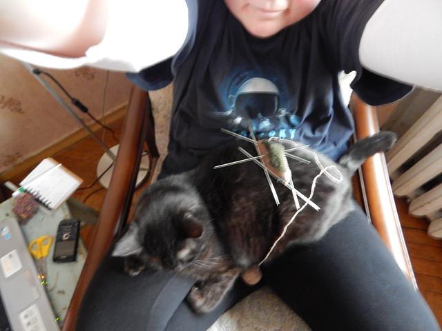 черный кот Муся на ручках, а я вяжу носок от мыска